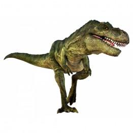 Proiector dinozauri Natural History Museum