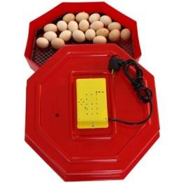 Incubator pentru oua electric Tehnoton CLEO 5, Capacitate 60 oua